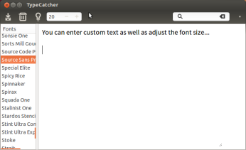 You can enter custom text and adjust its size.